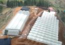 COLOMBIA One World Pharma construirá planta de extracción para cannabis medicinal en el país